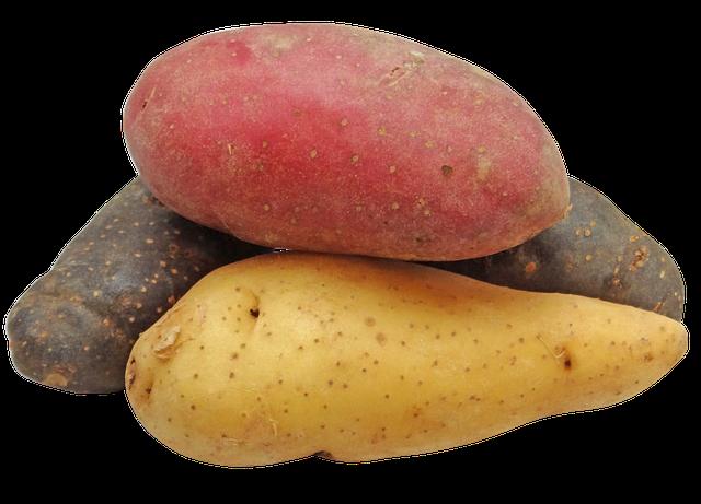 různobarevné brambory