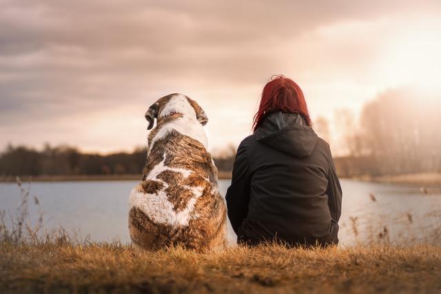 pes přítel