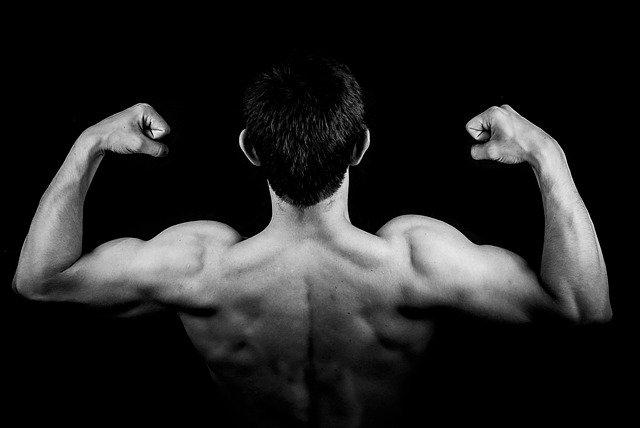 ukázka svalů